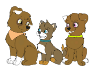 Spencer, Geyser and Miracle~