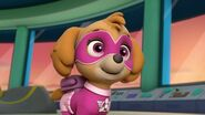 PAW Patrol Skye Pups Save Apollo