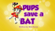 Pups Save a Bat