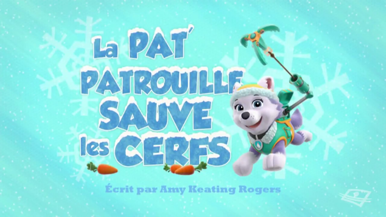 image paw patrol la pat 39 patrouille la pat 39 patrouille sauve les paw patrol wiki. Black Bedroom Furniture Sets. Home Design Ideas