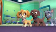 PAW.Patrol.S01E21.Pups.Save.the.Easter.Egg.Hunt.720p.WEBRip.x264.AAC 199232