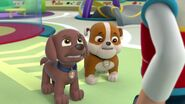 PAW.Patrol.S01E16.Pups.Save.Christmas.720p.WEBRip.x264.AAC 247147