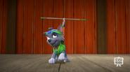 Pup-Fu!31(Rocky Routine)