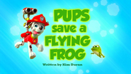 Pups Save a Flying Frog HD