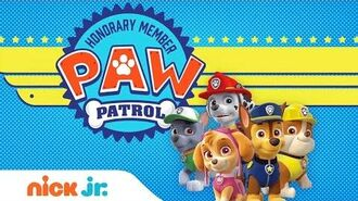 Play the 'PAW Patrol Academy' Game with Marshall, Chase, & More Games Nick Jr