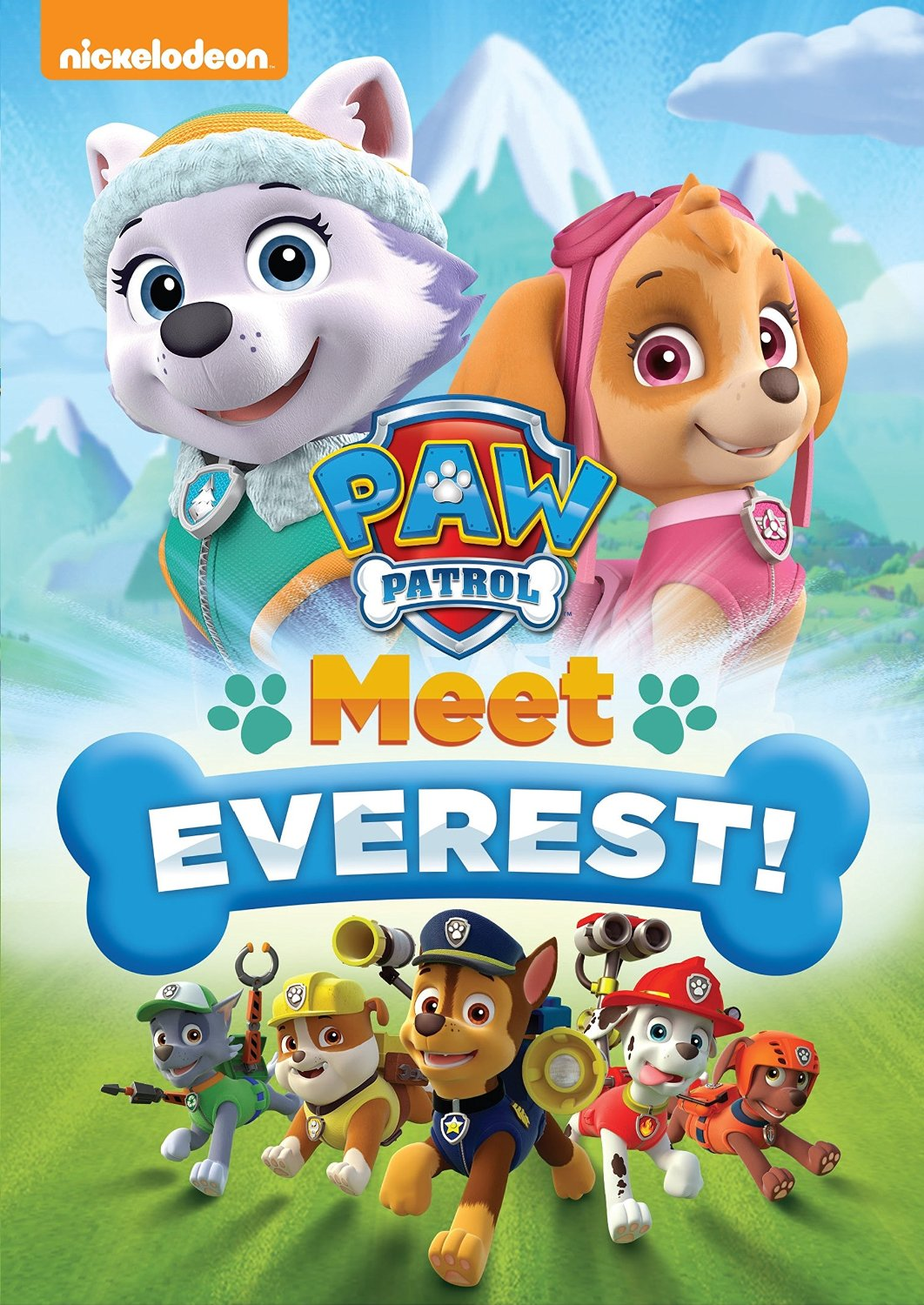 paw patrol meet everest movie