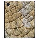 Mat-fossil