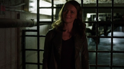 3x06 - Root sewers