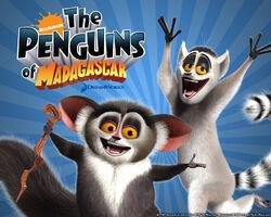 Madagascar-Wallpaper--lemurs