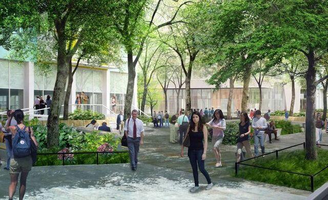 File:New-York-University.jpg q=100.jpeg