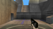 Perfect Dark Weapons (19)