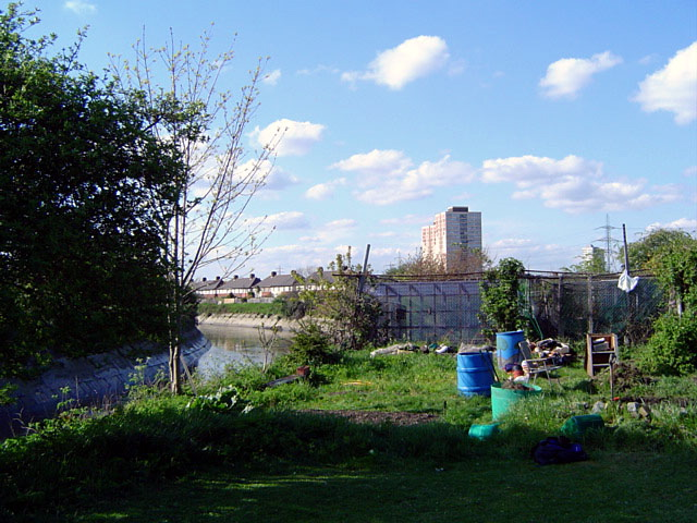 File:Allotments in London E15.jpg