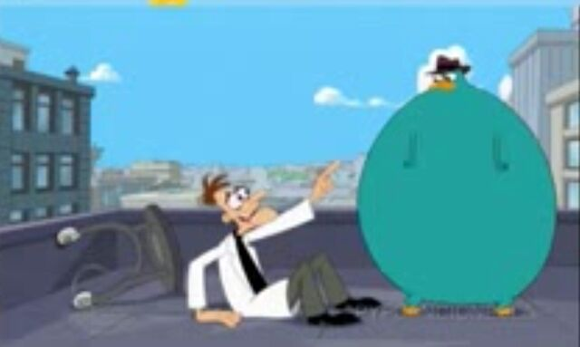 File:Perry after being hit by doof's inator.jpg
