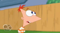QuestioningPhineas