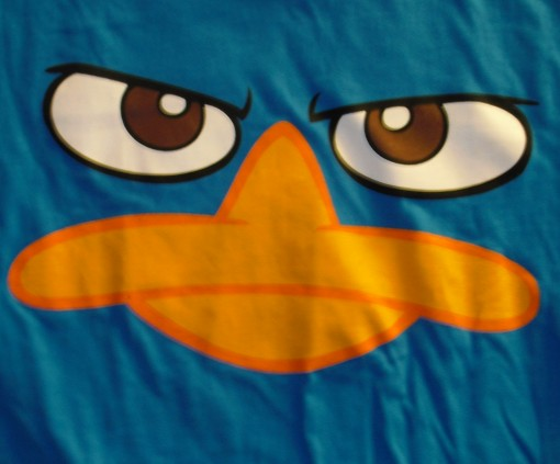 File:Perry face - blue t-shirt.jpg