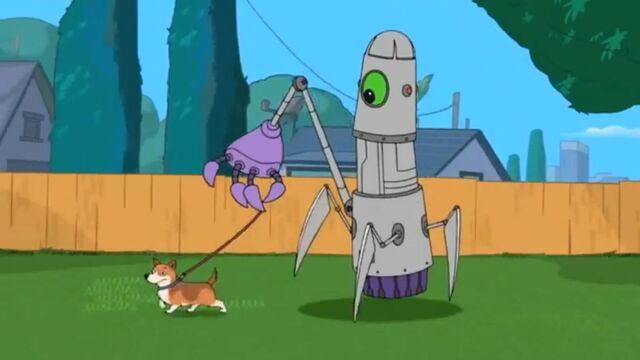 File:When it walks a dog.JPG