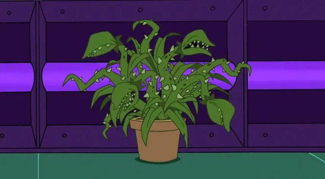 File:Plant minion.jpg