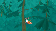 Candace falls from tree