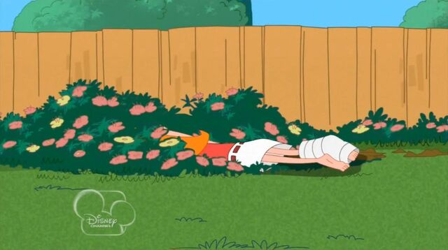 File:Candace in the grass.jpg