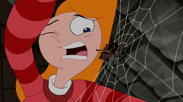 File:CandaceSpider.jpg