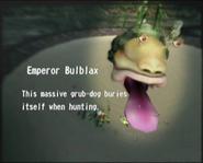 Reel8 Emperor Bulblax