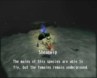 File:Reel20 Shearwig.png