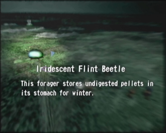 File:Reel13 Iridescent Flint Beetle.png