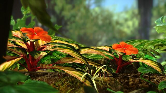 File:Tropical Wilds Flowers.jpeg