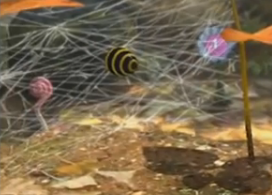 File:Bee egg.png