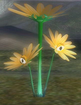 File:Creeping Chrysanthemum hiding.png