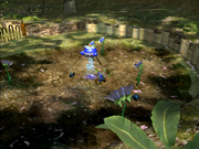 Awakening Wood Blue Pikmin