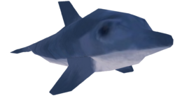 POTCO Dolphin