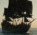 Black Pearl Tortuga