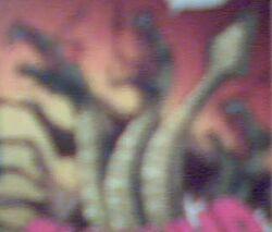 Caladonis serpent