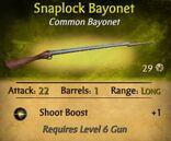 Snaplock Bayonet