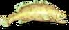 Fish 16