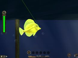 Fishinggame1
