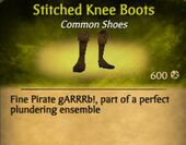 Stitched Knee Boots