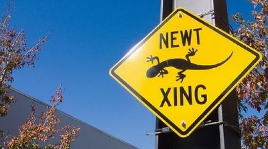 File:Newt sign.jpg