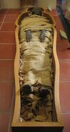 Mummy in Vatican Museums