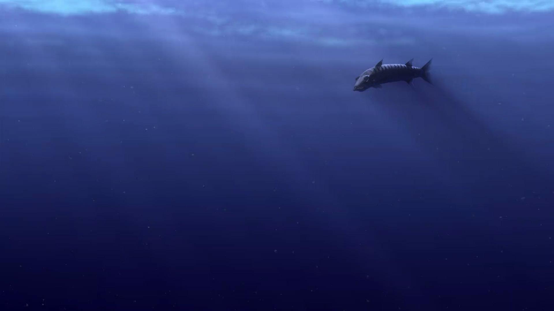 Barracuda | Pixar Wiki | FANDOM powered by Wikia