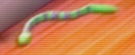 File:Snake Ts3cameoxZx2x.png