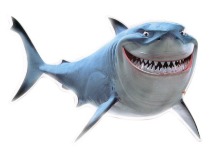 File:Bruce the great white.jpg