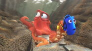 Dory and Hank