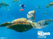 Finding Nemo 002