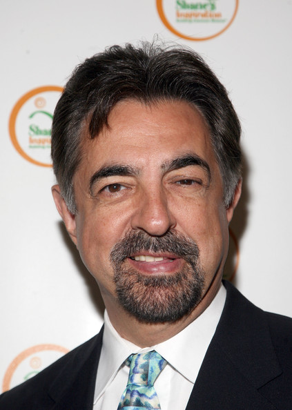 Joe Mantegna earned a 0.13 million dollar salary - leaving the net worth at 18 million in 2018