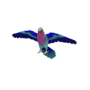 Lilac Breasted Roller Transparent.png