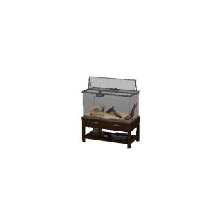 Terrarium jaszczurek