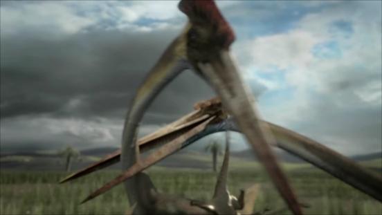 Hatzegopteryx Size Image - Hatzego...