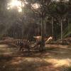 CarcharodontosaurusTerritoryPortrait